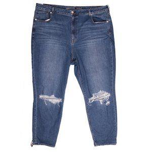 AE American Eagle Mom Distressed Jeans Plus 22